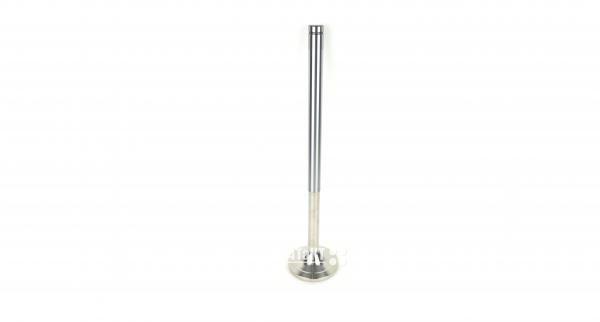 1211008 Exhaust valve